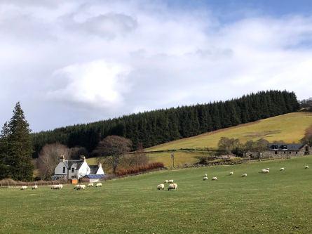 Countryside near Inverness, Scotland